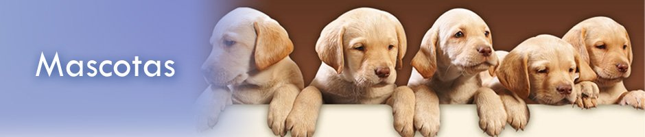 Banner-mascotas
